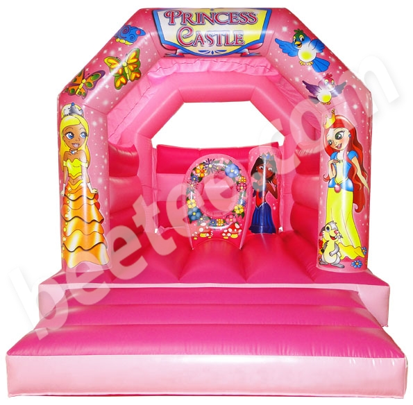 princess bouncy castle with biffas